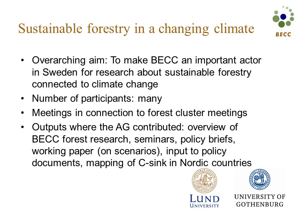 Sustainable forestry in a changing climate Overarching aim: To make BECC an important actor in Sweden for research about sustainable forestry connected to climate change Number of participants: many Meetings in connection to forest cluster meetings Outputs where the AG contributed: overview of BECC forest research, seminars, policy briefs, working paper (on scenarios), input to policy documents, mapping of C-sink in Nordic countries