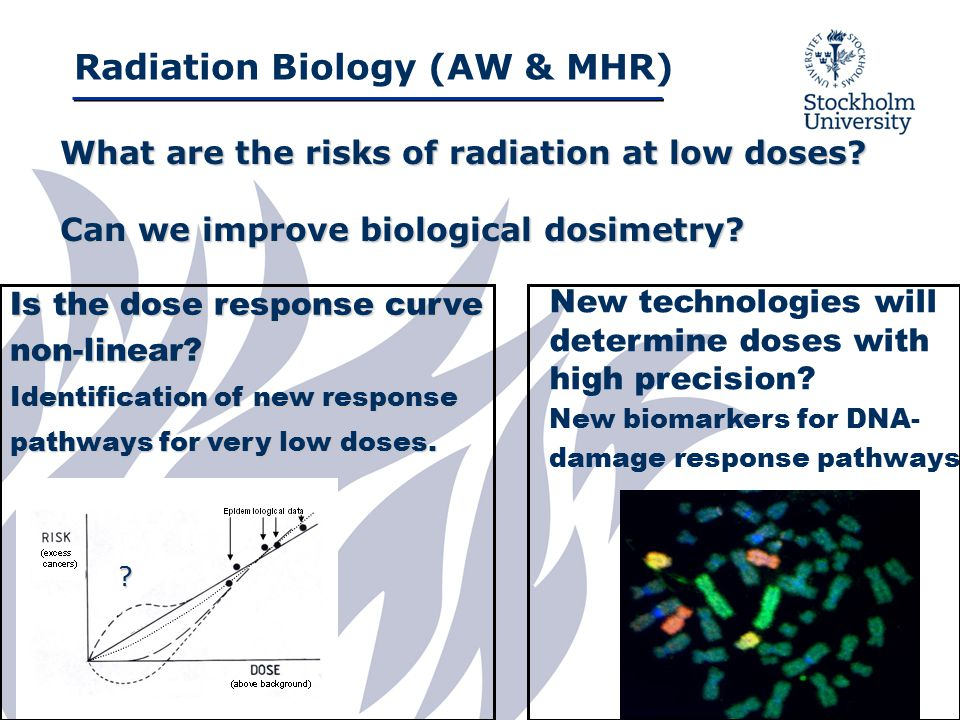 Radiation Biology (AW & MHR) What are the risks of radiation at low doses.