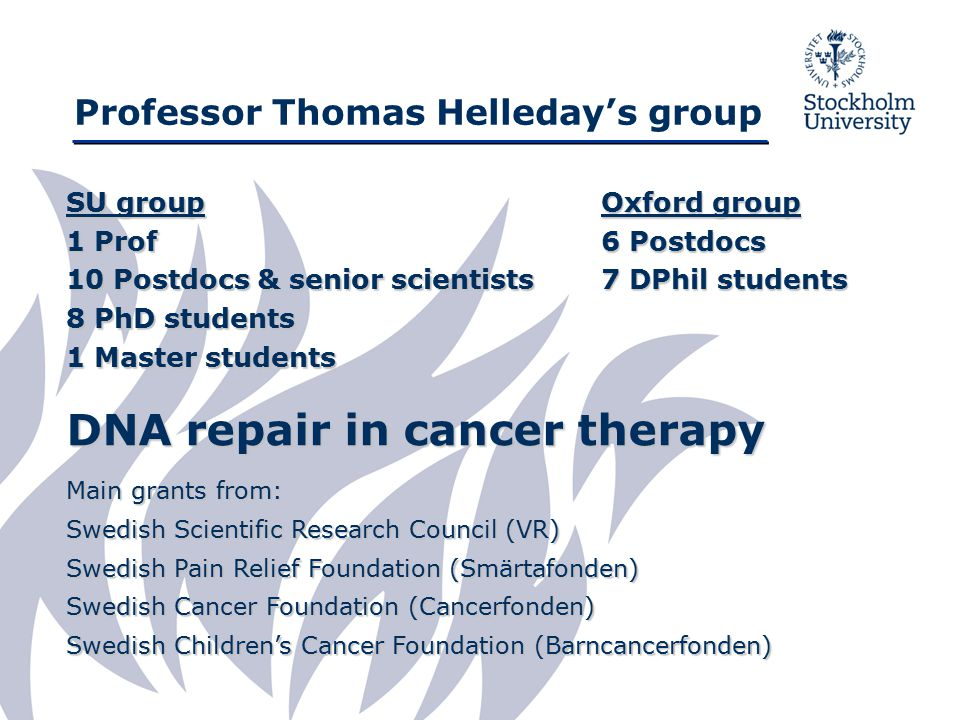 Professor Thomas Helleday's group SU group 1 Prof 10 Postdocs & senior scientists 8 PhD students 1 Master students DNA repair in cancer therapy Main grants from: Swedish Scientific Research Council (VR) Swedish Pain Relief Foundation (Smärtafonden) Swedish Cancer Foundation (Cancerfonden) Swedish Children's Cancer Foundation (Barncancerfonden) Oxford group 6 Postdocs 7 DPhil students