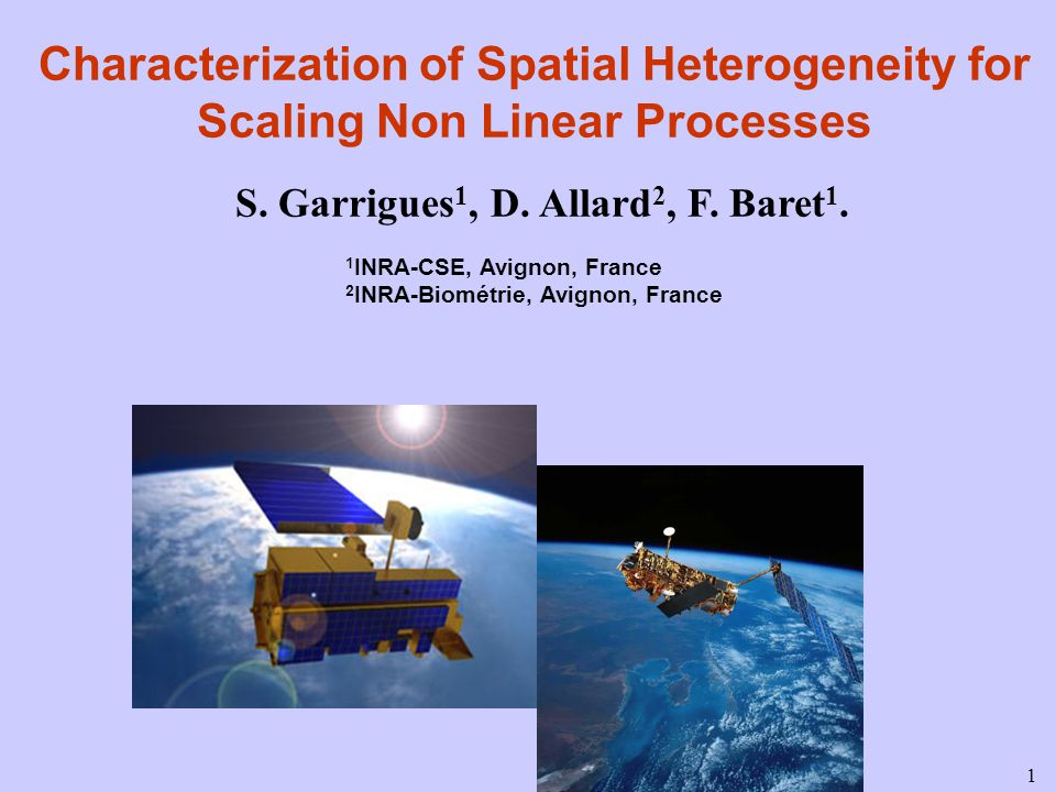 1 Characterization of Spatial Heterogeneity for Scaling Non Linear Processes S.