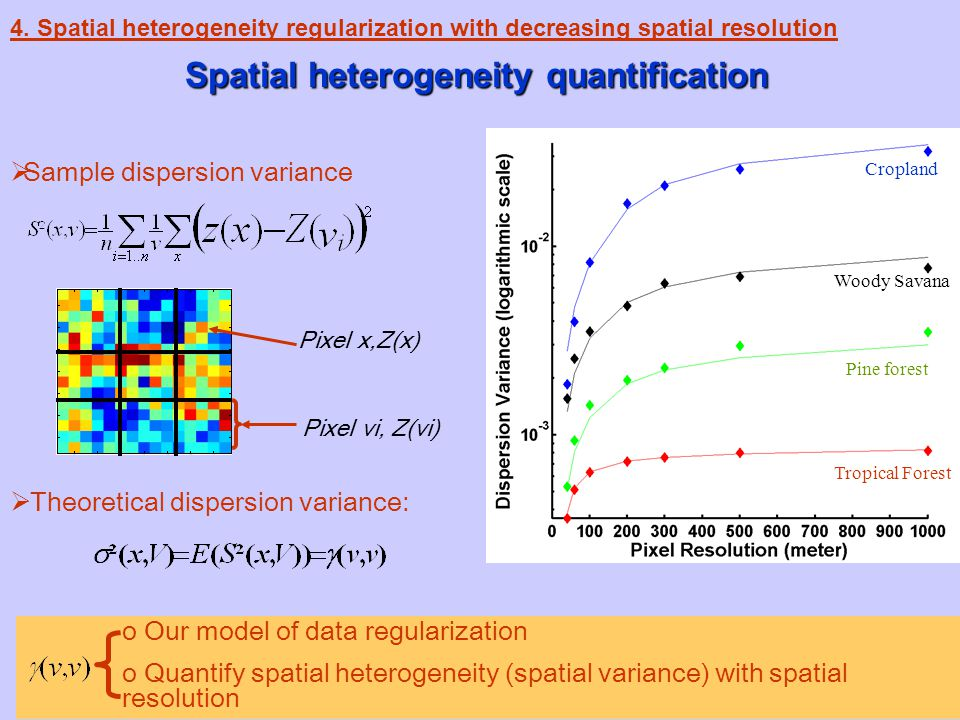 13 Spatial heterogeneity quantification 4.