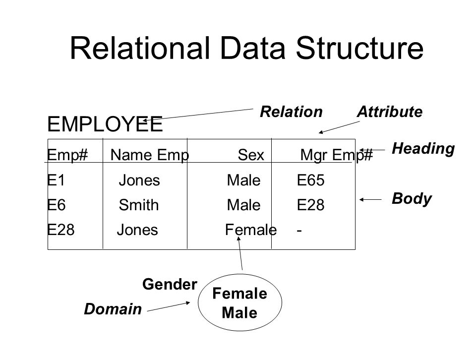 Relational Data Structure EMPLOYEE Emp# Name Emp Sex Mgr Emp# E1 JonesMaleE65 E6 SmithMaleE28 E28Jones Female- Relation Attribute Heading Body Female Male Gender Domain