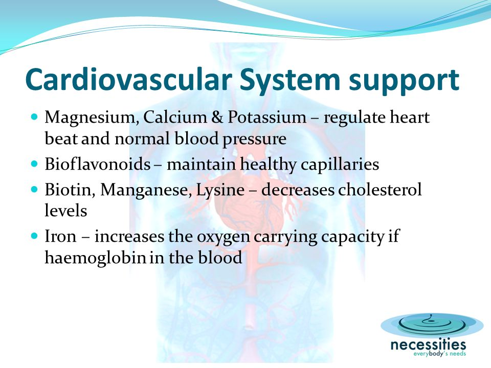 Cardiovascular System support Magnesium, Calcium & Potassium – regulate heart beat and normal blood pressure Bioflavonoids – maintain healthy capillaries Biotin, Manganese, Lysine – decreases cholesterol levels Iron – increases the oxygen carrying capacity if haemoglobin in the blood