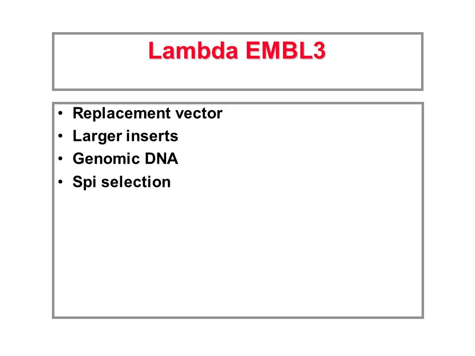 Replacement vector Larger inserts Genomic DNA Spi selection Lambda EMBL3