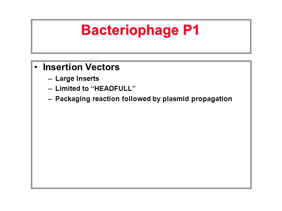 Insertion Vectors –Large Inserts –Limited to HEADFULL –Packaging reaction followed by plasmid propagation Bacteriophage P1