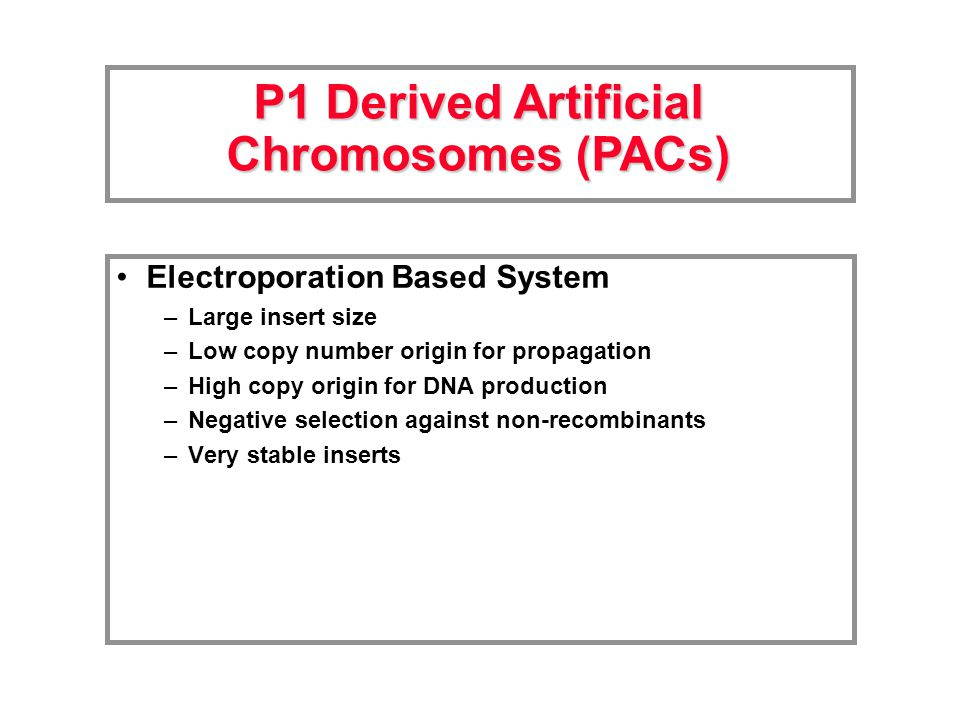 Electroporation Based System –Large insert size –Low copy number origin for propagation –High copy origin for DNA production –Negative selection against non-recombinants –Very stable inserts P1 Derived Artificial Chromosomes (PACs)