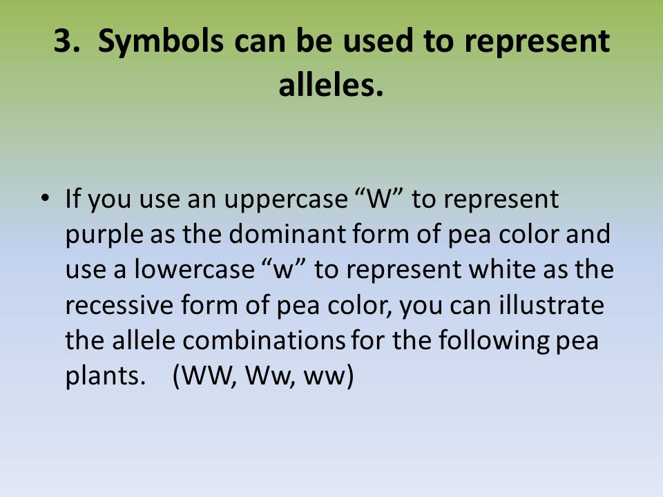 3. Symbols can be used to represent alleles.