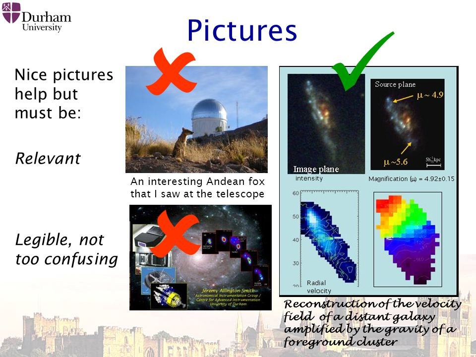 Pictures Nice pictures help but must be: Relevant An interesting Andean fox that I saw at the telescope  Reconstruction of the velocity field of a distant galaxy amplified by the gravity of a foreground cluster Legible, not too confusing 