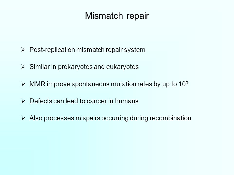 Mismatch repair  Post-replication mismatch repair system  Similar in prokaryotes and eukaryotes  MMR improve spontaneous mutation rates by up to 10 3  Defects can lead to cancer in humans  Also processes mispairs occurring during recombination