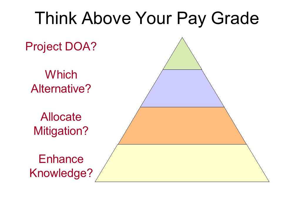 Think Above Your Pay Grade Project DOA Which Alternative Allocate Mitigation Enhance Knowledge