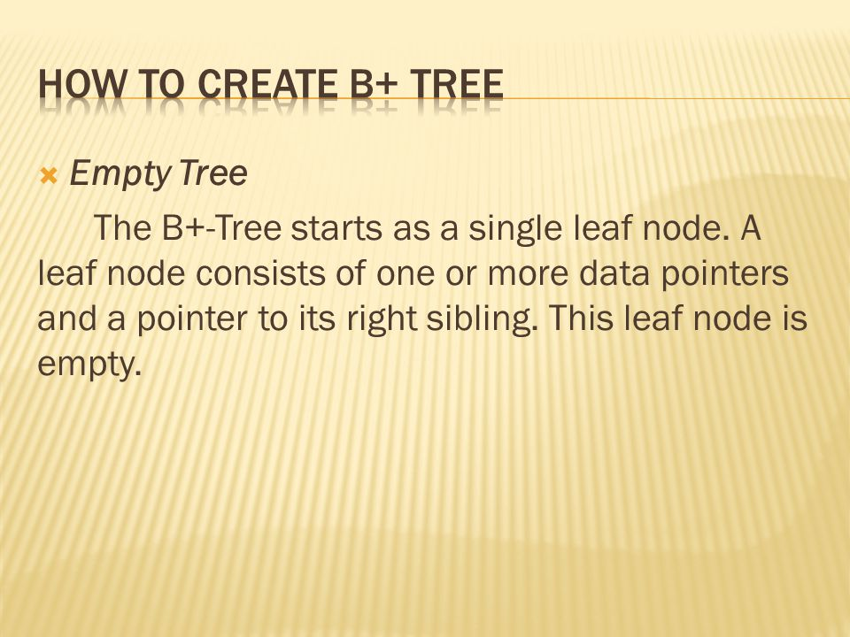  Empty Tree The B+-Tree starts as a single leaf node.