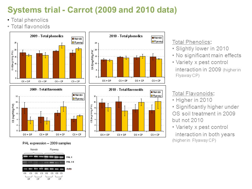 Systems trial - Carrot (2009 and 2010 data) Total Flavonoids: Higher in 2010 Significantly higher under OS soil treatment in 2009 but not 2010 Variety x pest control interaction in both years (higher in Flyaway CP) Total phenolics Total flavonoids Total Phenolics: Slightly lower in 2010 No significant main effects Variety x pest control interaction in 2009 (higher in Flyaway CP)