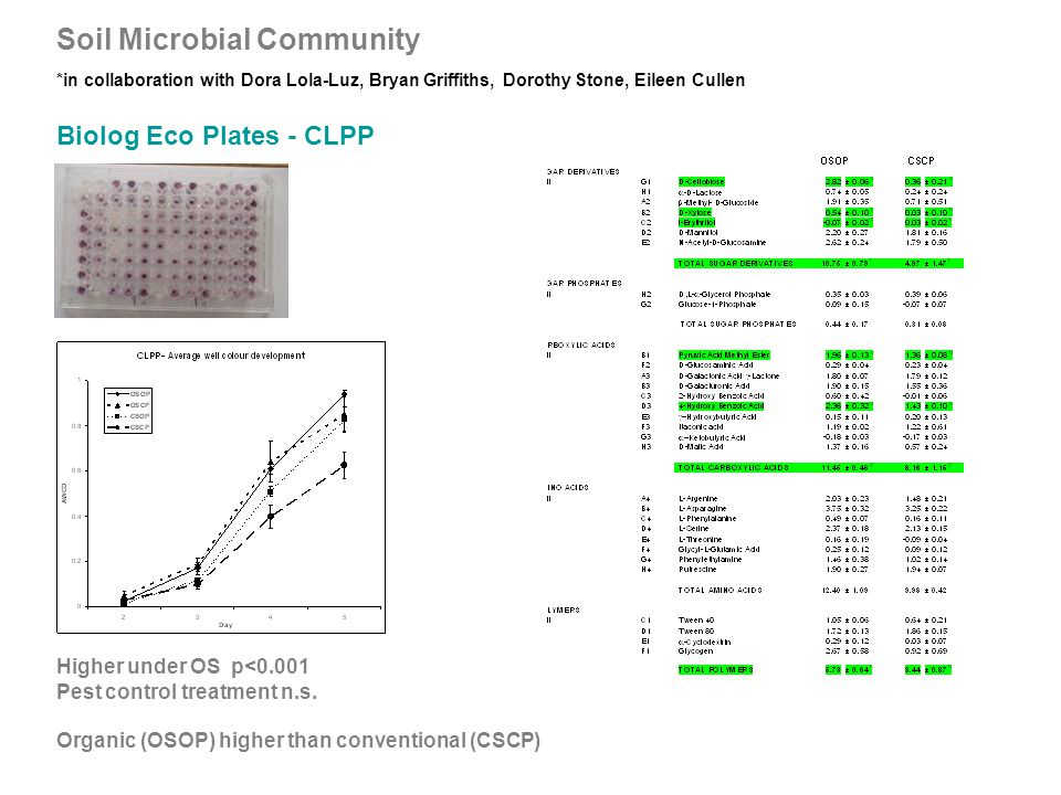 Soil Microbial Community *in collaboration with Dora Lola-Luz, Bryan Griffiths, Dorothy Stone, Eileen Cullen Higher under OS p<0.001 Pest control treatment n.s.