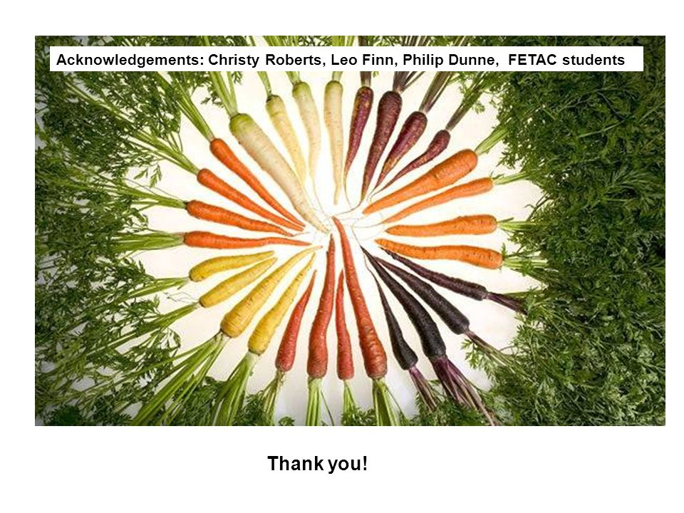 Thank you! Acknowledgements: Christy Roberts, Leo Finn, Philip Dunne, FETAC students