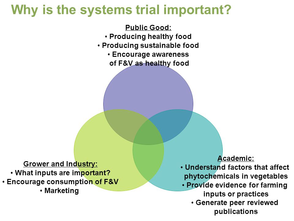 Why is the systems trial important.