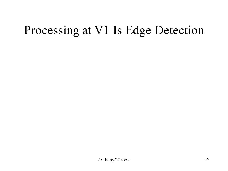 Anthony J Greene19 Processing at V1 Is Edge Detection