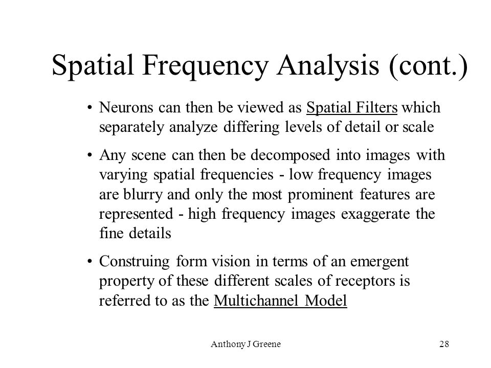 Anthony J Greene28 Spatial Frequency Analysis (cont.) Neurons can then be viewed as Spatial Filters which separately analyze differing levels of detail or scale Any scene can then be decomposed into images with varying spatial frequencies - low frequency images are blurry and only the most prominent features are represented - high frequency images exaggerate the fine details Construing form vision in terms of an emergent property of these different scales of receptors is referred to as the Multichannel Model