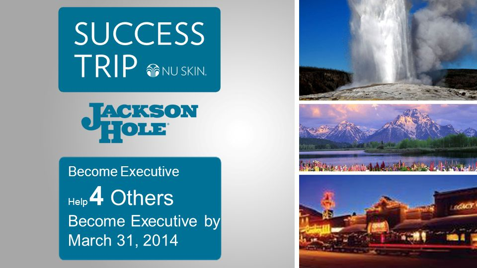 Become Executive Help 4 Others Become Executive by March 31, 2014
