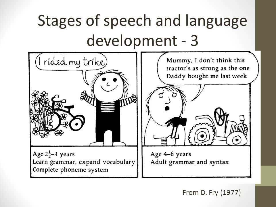 From D. Fry (1977) Stages of speech and language development - 3