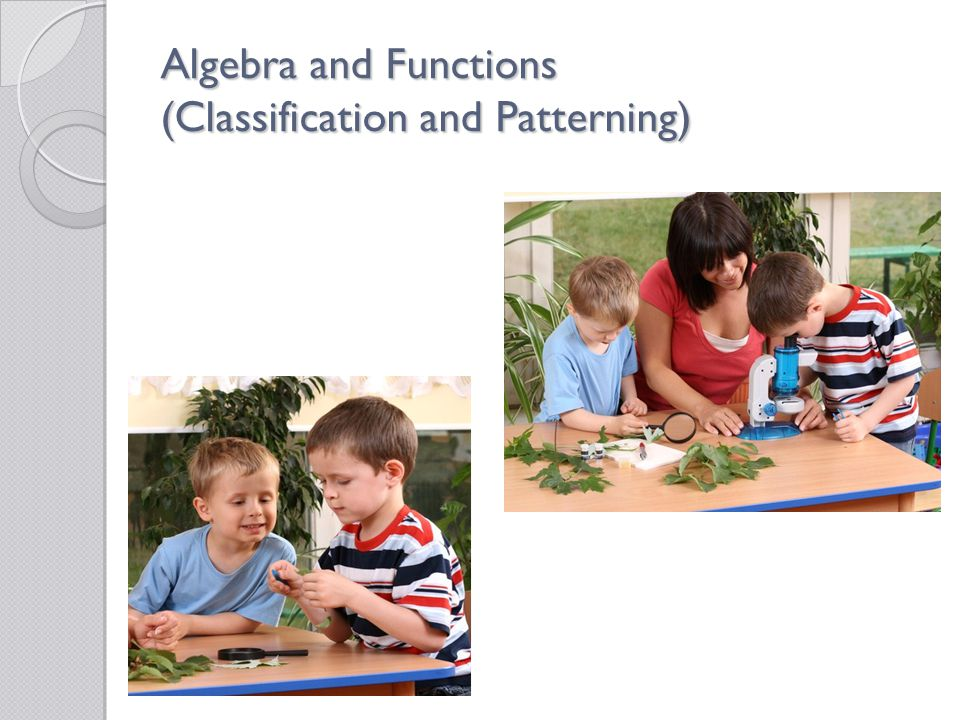 Algebra and Functions (Classification and Patterning)