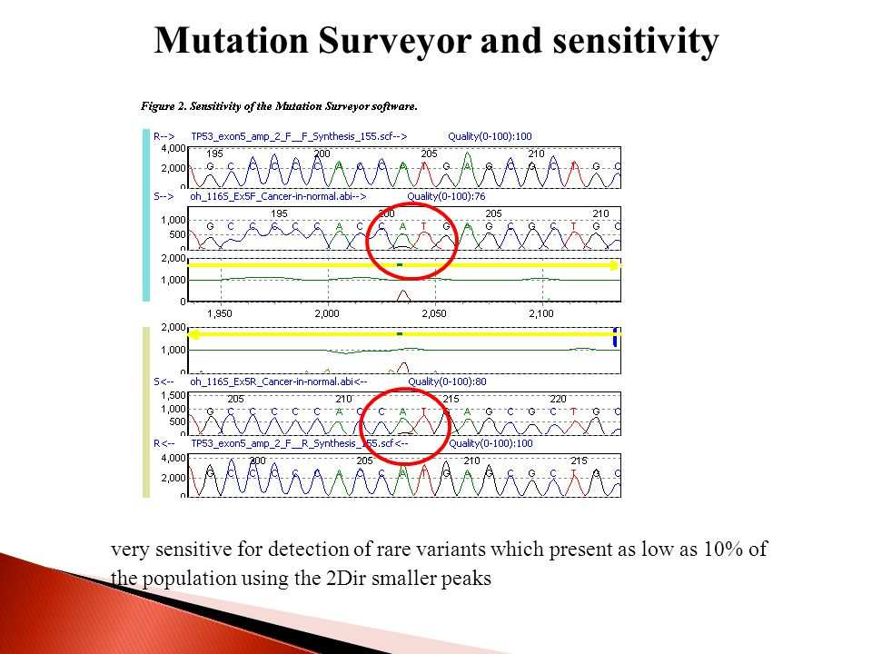 Mutation Surveyor and sensitivity very sensitive for detection of rare variants which present as low as 10% of the population using the 2Dir smaller peaks