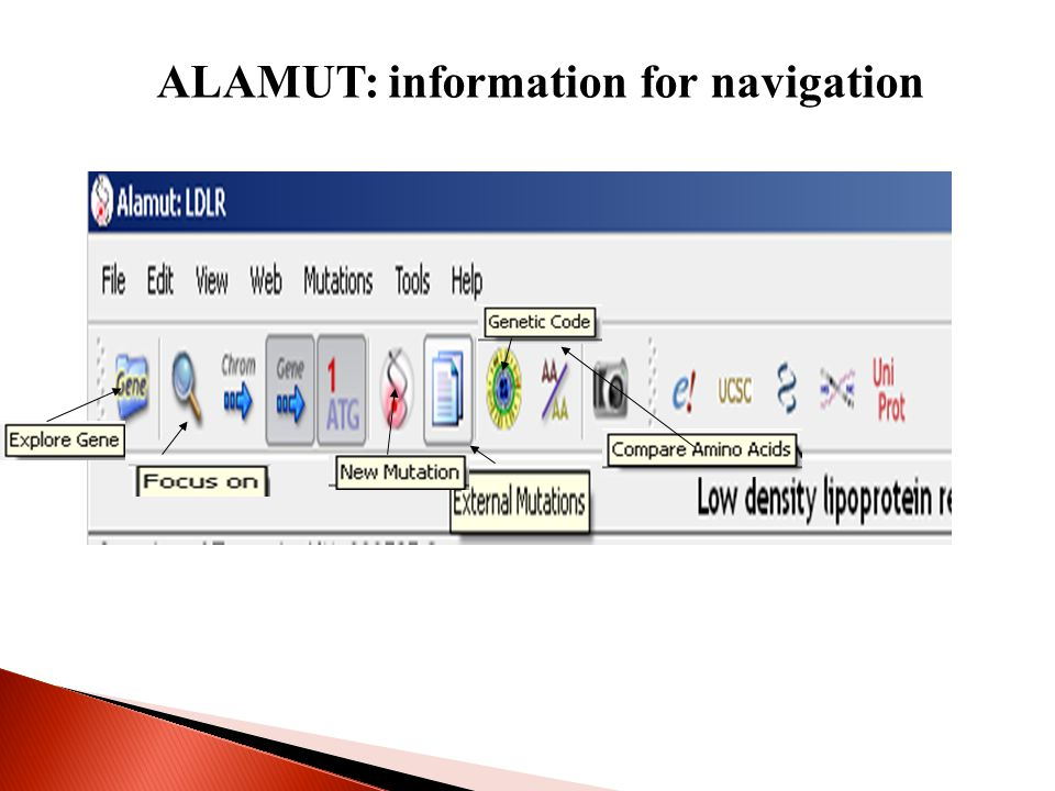 ALAMUT: information for navigation