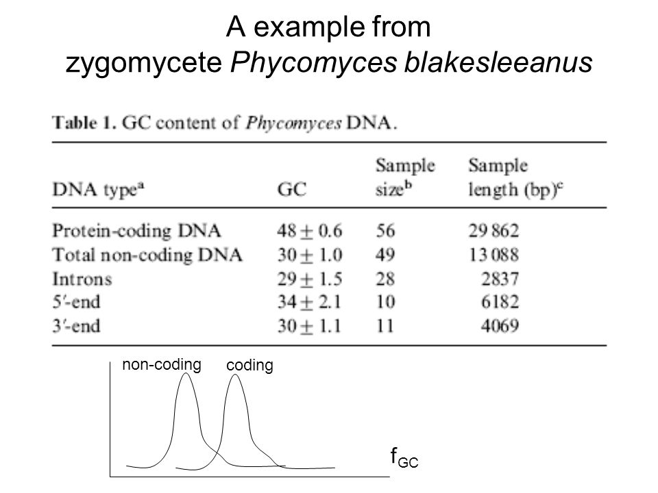 A example from zygomycete Phycomyces blakesleeanus f GC non-coding coding