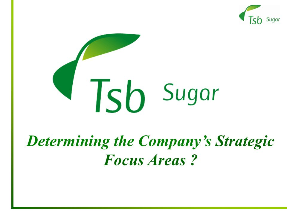 Determining the Company's Strategic Focus Areas