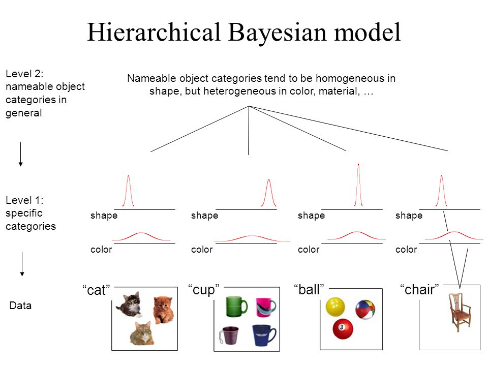 color Nameable object categories tend to be homogeneous in shape, but heterogeneous in color, material, … Level 1: specific categories Data Level 2: nameable object categories in general shape color cat cup ball chair shape color shape color Hierarchical Bayesian model