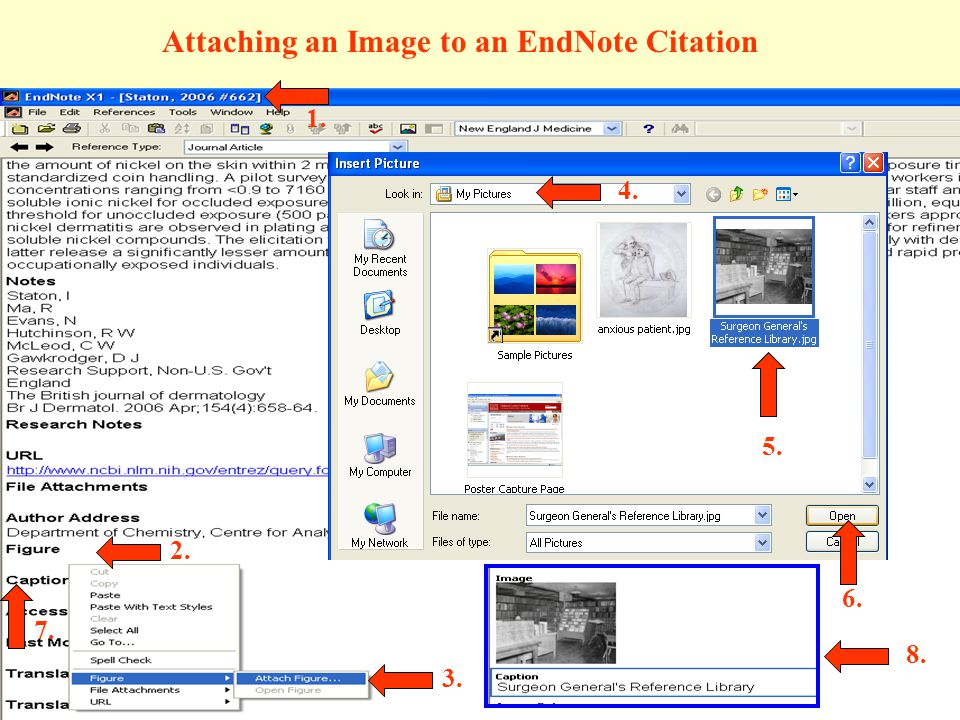 Attaching an Image to an EndNote Citation 1. 2. 3. 4. 5. 6. 8. 7.