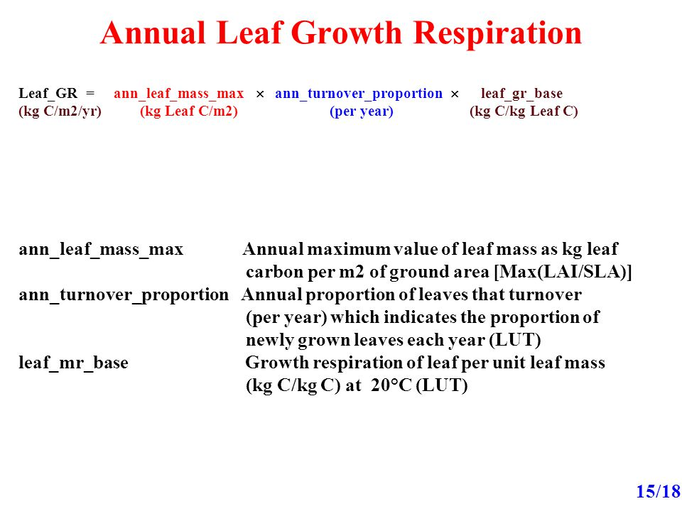 Annual Leaf Growth Respiration 15/18 Leaf_GR = ann_leaf_mass_max  ann_turnover_proportion  leaf_gr_base (kg C/m2/yr) (kg Leaf C/m2) (per year) (kg C/kg Leaf C) ann_leaf_mass_max Annual maximum value of leaf mass as kg leaf carbon per m2 of ground area [Max(LAI/SLA)] ann_turnover_proportion Annual proportion of leaves that turnover (per year) which indicates the proportion of newly grown leaves each year (LUT) leaf_mr_base Growth respiration of leaf per unit leaf mass (kg C/kg C) at 20°C (LUT)
