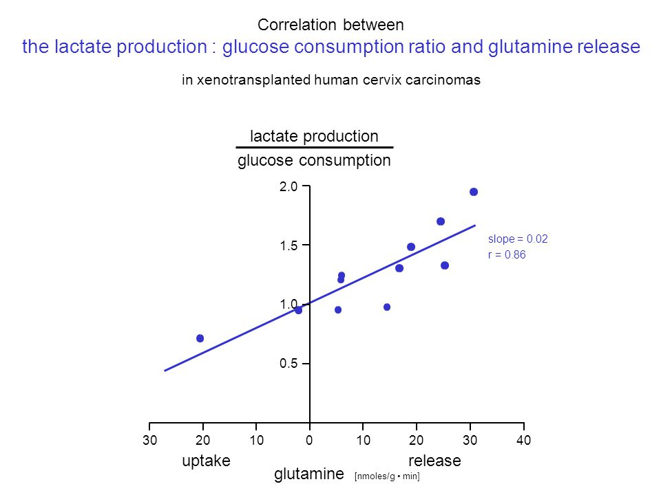 lactate production glucose consumption 010203040102030 uptakerelease glutamine [nmoles/g min] 0.5 1.0 1.5 2.0 Correlation between the lactate production : glucose consumption ratio and glutamine release in xenotransplanted human cervix carcinomas slope = 0.02 r = 0.86