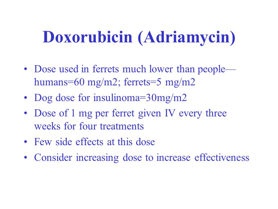 Doxorubicin (Adriamycin) Dose used in ferrets much lower than people— humans=60 mg/m2; ferrets=5 mg/m2 Dog dose for insulinoma=30mg/m2 Dose of 1 mg per ferret given IV every three weeks for four treatments Few side effects at this dose Consider increasing dose to increase effectiveness