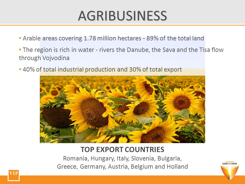 Arable areas covering 1.78 million hectares - 89% of the total land The region is rich in water - rivers the Danube, the Sava and the Tisa flow through Vojvodina 40% of total industrial production and 30% of total export TOP EXPORT COUNTRIES Romania, Hungary, Italy, Slovenia, Bulgaria, Greece, Germany, Austria, Belgium and Holland AGRIBUSINESS