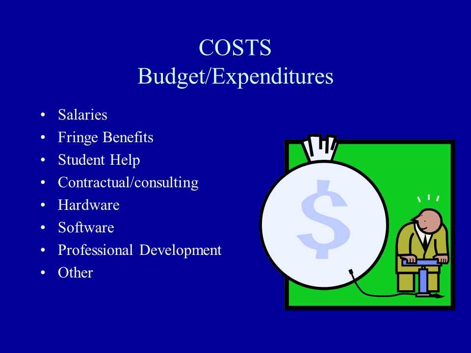 COSTS Budget/Expenditures Salaries Fringe Benefits Student Help Contractual/consulting Hardware Software Professional Development Other