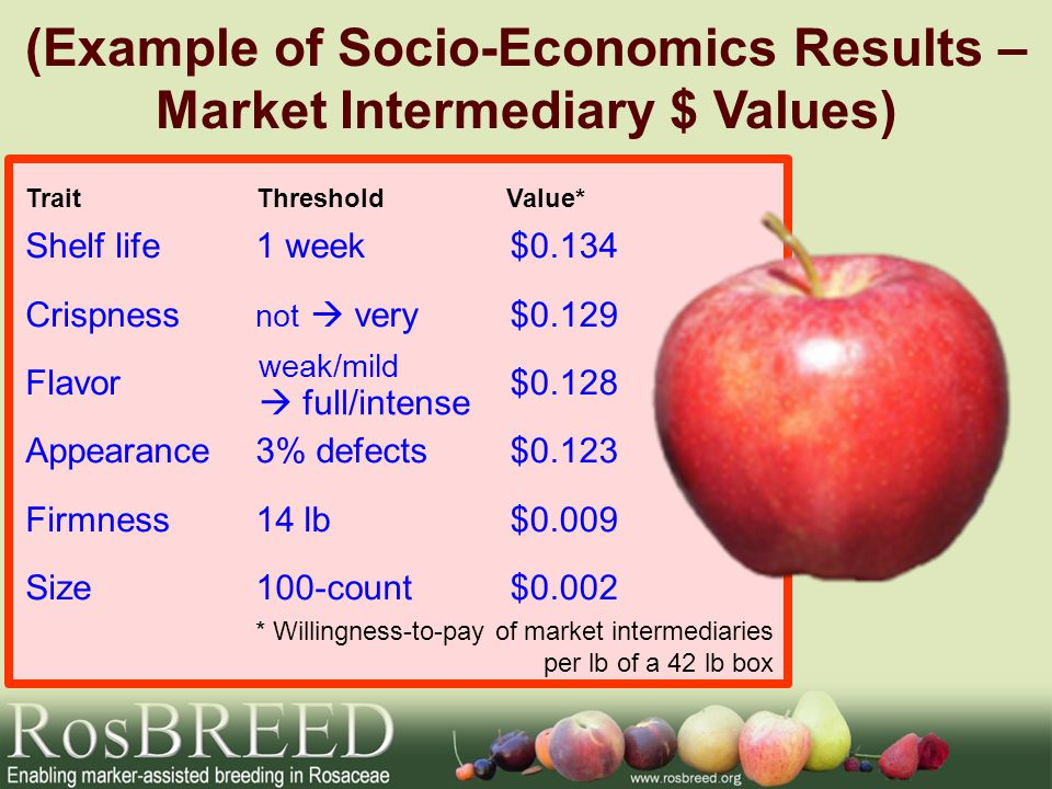 (Example of Socio-Economics Results – Market Intermediary $ Values) TraitThresholdValue* * Willingness-to-pay of market intermediaries per lb of a 42 lb box Shelf life Crispness Flavor Appearance Firmness Size $0.134 $0.129 $0.128 $0.123 $0.009 $0.002 1 week not  very 3% defects 14 lb 100-count weak/mild  full/intense