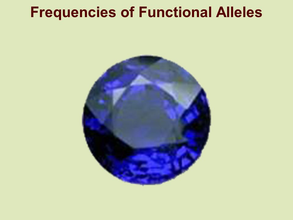 Frequencies of Functional Alleles