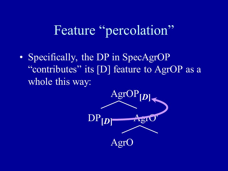 Feature percolation Specifically, the DP in SpecAgrOP contributes its [D] feature to AgrOP as a whole this way: AgrOP [D] DP [D] AgrO AgrO