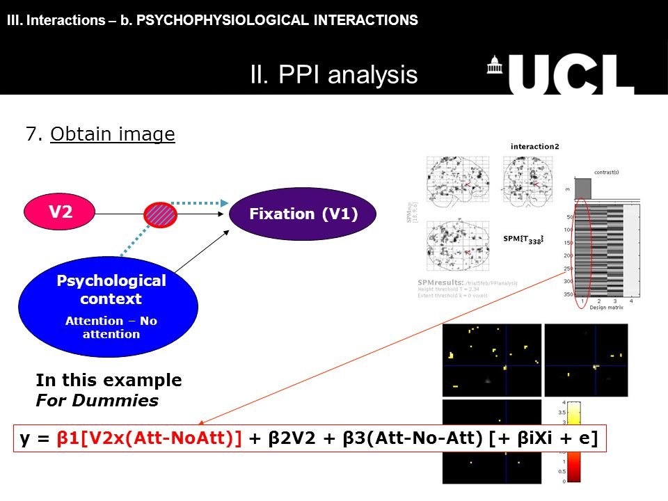 III. Interactions – b. PSYCHOPHYSIOLOGICAL INTERACTIONS 7.