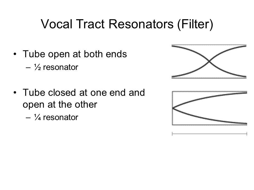 Vocal Tract Resonators (Filter) Tube open at both ends –½ resonator Tube closed at one end and open at the other –¼ resonator