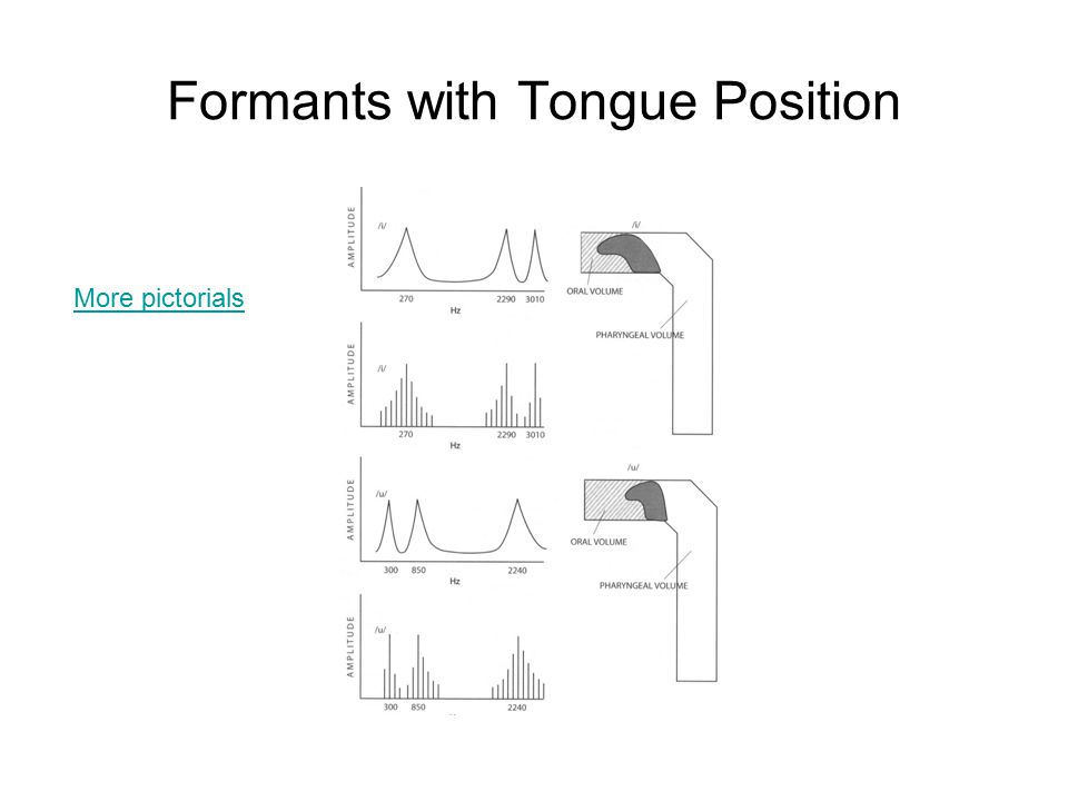 Formants with Tongue Position More pictorials