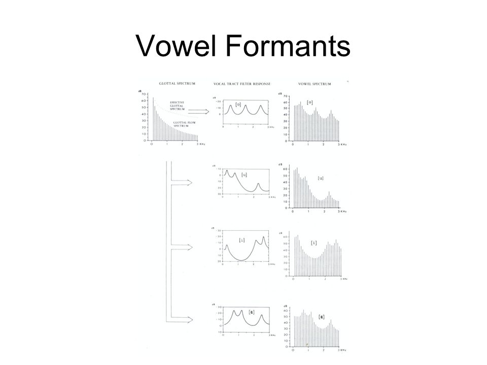 Vowel Formants