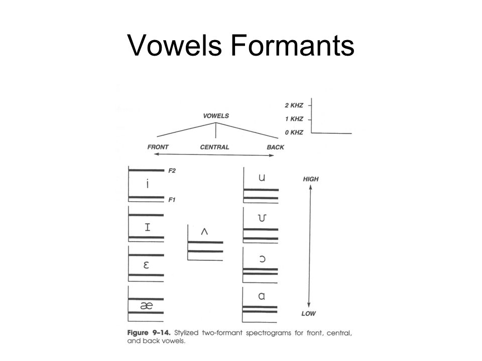 Vowels Formants