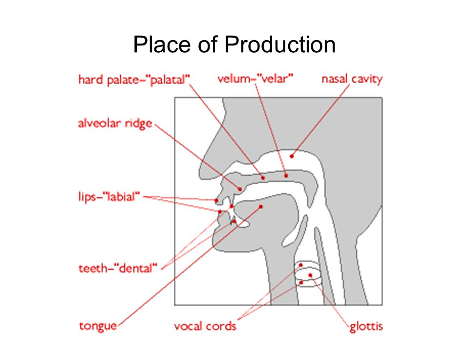 Place of Production
