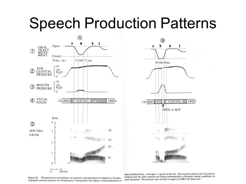Speech Production Patterns