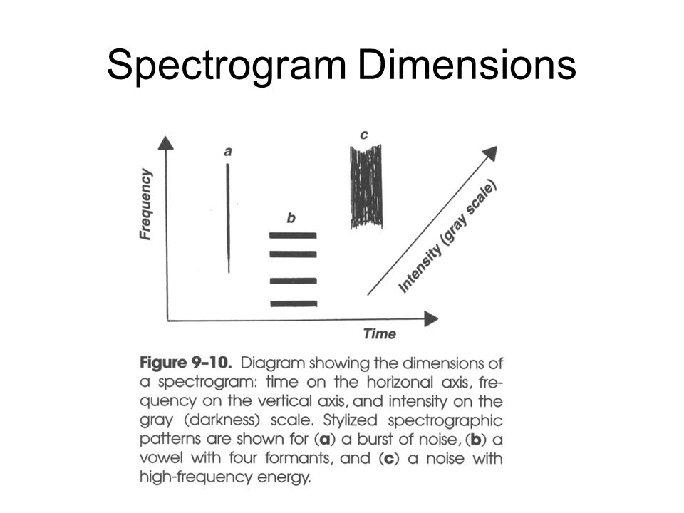 Spectrogram Dimensions