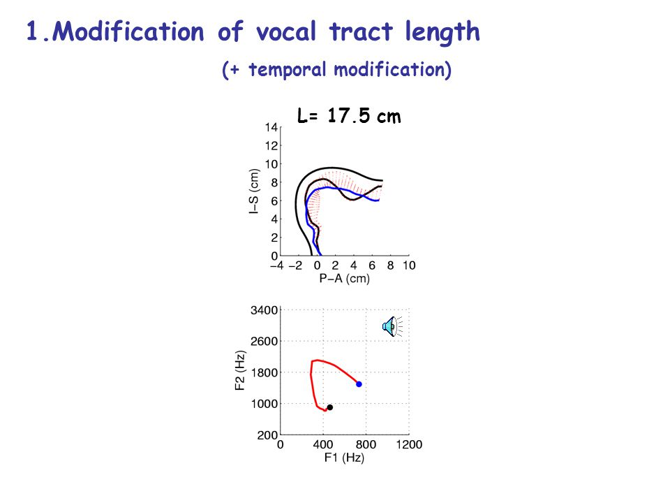 Voice Quality Changes based on vocal tract modifications 1.Longitudinal: Modification of vocal tract length 2.