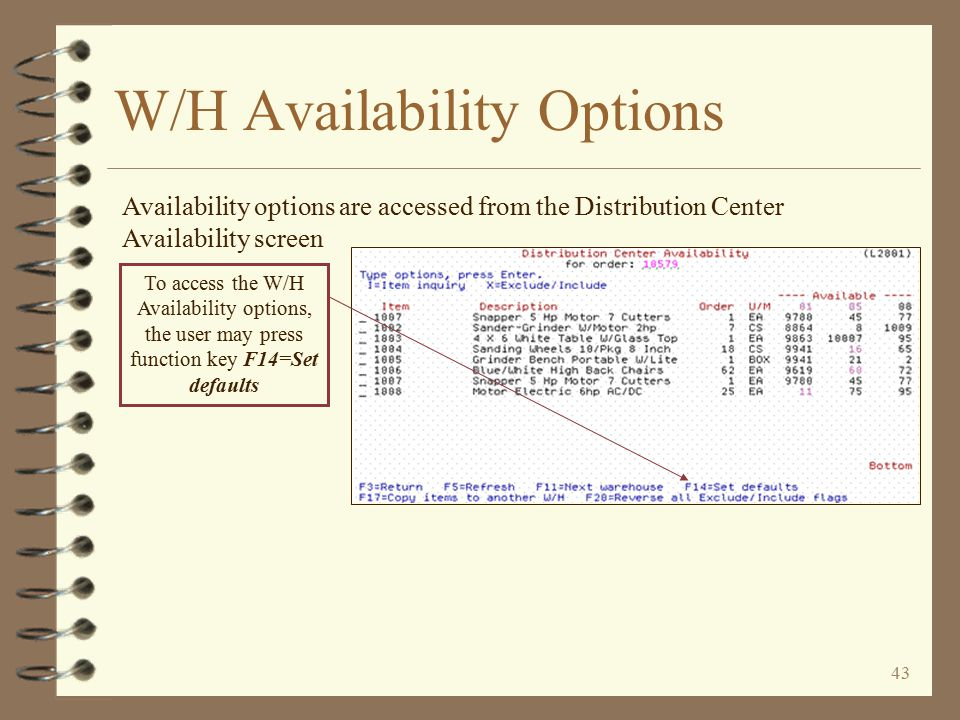 42 W/H Availability Options 4 Each user may set W/H availability options that are unique to each user id 4 Availability options may be accessed from the Distribution Center Availability screen 4 The user may set the options for future sessions or only for the present session