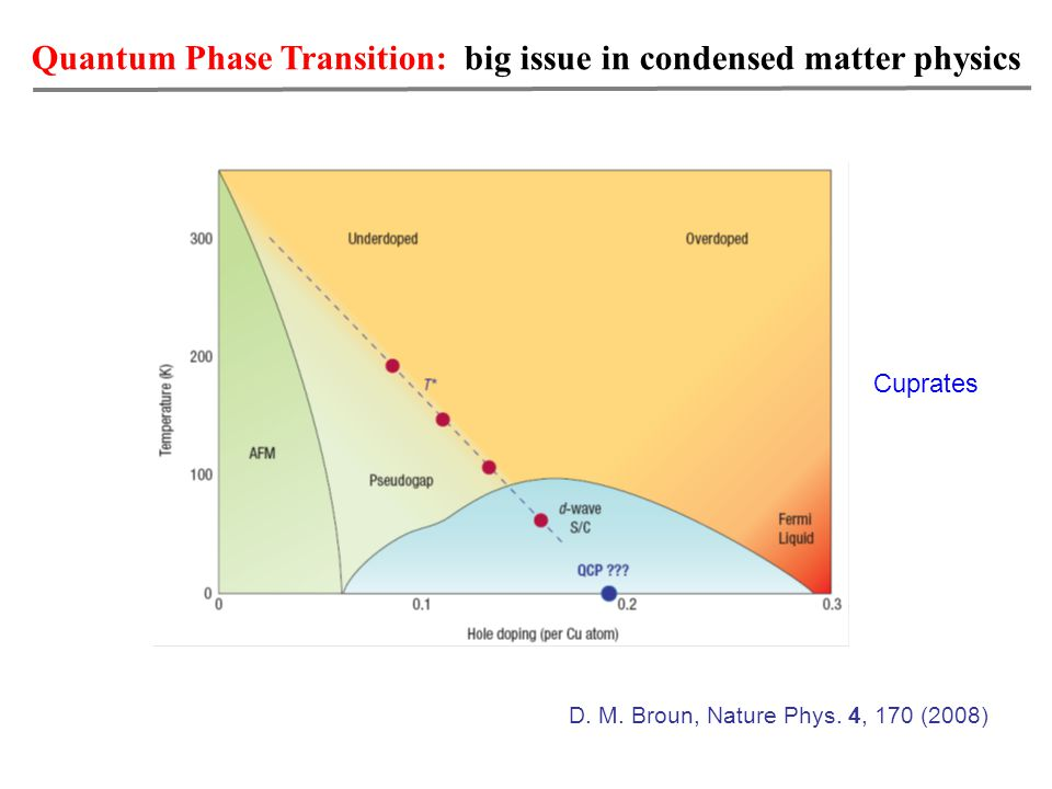 Quantum Phase Transition: big issue in condensed matter physics Cuprates D.
