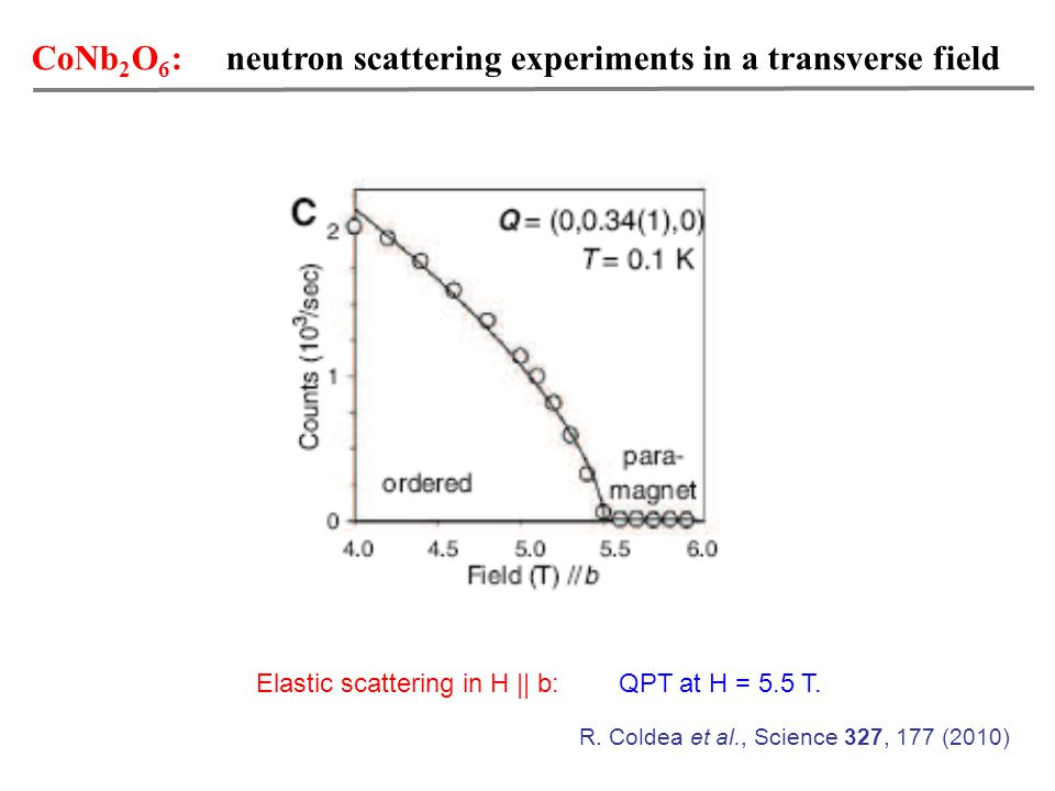 CoNb 2 O 6 : neutron scattering experiments in a transverse field Elastic scattering in H || b: QPT at H = 5.5 T.
